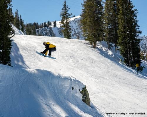 snowboard Bataleon met Bindingen
